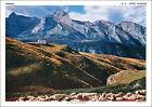 ANNÉES 60 CHROMO TRÉS GRAND FORMAT 60s Col d'Aubisque Pyrénées