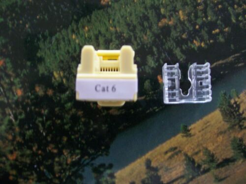 FREE SHIPPING! RJ45 Cat6 Cat-6 8P8C 110  Keystone Jack IVORY  USA SELLER 50