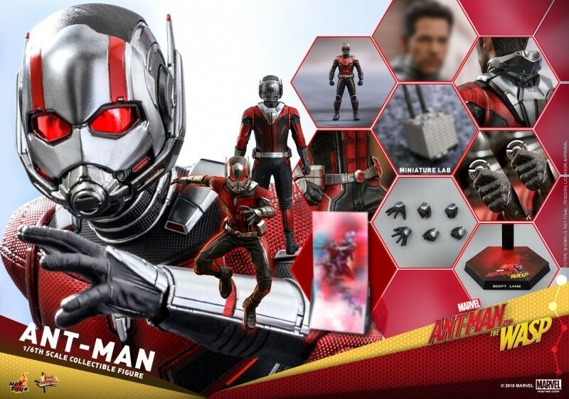 heta leksaker MMS497 Ant -Man och Wasp 1  6th skala Ant -Man samlaible Figur
