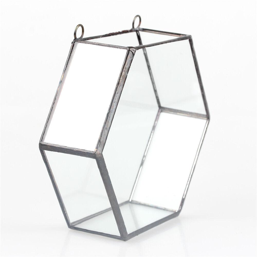 Hang Wall Mount Hexagon Glass Geometric Terrarium Planter Succulent Flower Pot
