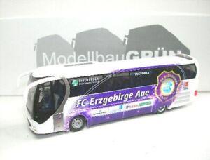 Si-RO-2-Lion-039-s-Star-FC-Erzgebirge-remissione-dei-peccati-2008-1-87-Rietze