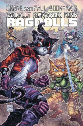 RADICALLY RONIN RAGDOLLS #1 WILLIAMS VARIANT KEVIN EASTMAN STUDIOS COMICS INDY