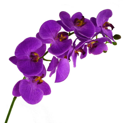 31-Inch Deluxe Artificial Orchid Stem