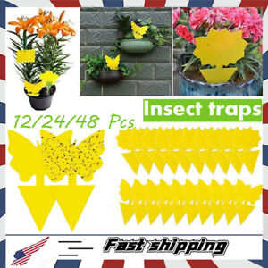 Sticky Fruit Fly Traps & Fungus Gnat Trap Killer for Indoor/Outdoor-Non-Toxic