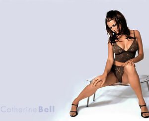 CATHERINE-BELL-8x10-PHOTO-PICTURE-PIC-HOT-SEXY-BIG-BOOBS-TIGHT-TOP-PANTIES-2