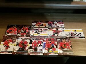 2017-18-Upper-Deck-UD-series-1-amp-Series-2-Chicago-Black-Hawks-Team-Set-12-cards