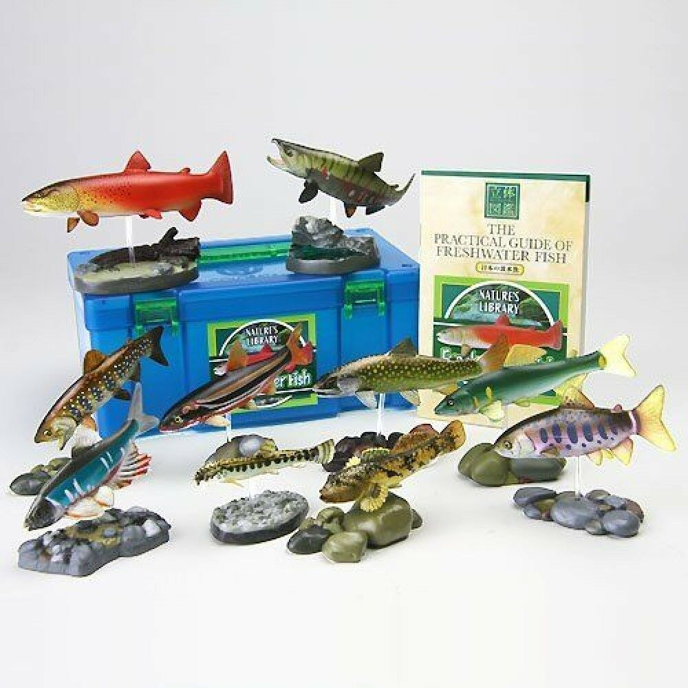 COLORATA INC. Real Fish Box Fresh Water Fish Figures Figures Figures from Japan F S J6063 7946a6