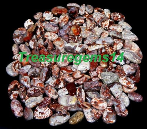 250 CT WHOLESALE LOT NATURAL RED MEXICO CRAZY LACE AGATE CABOCHON LOOSE GEMSTONE