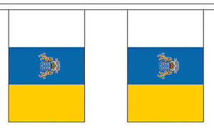 STATE BUNTING 9 metres 30 flags Polyester flag ARIZONA U.S