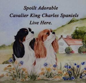CAVALIER-KING-CHARLES-SPANIELS-DOG-tri-blenheim-SPOILT-DOG-PLAQUE-TILE