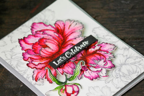 Heartfelt Creations Sweet Peony Collection 3 Stamps 3 Dies 1 Paper Pad IWIA-196