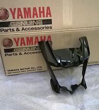 """Yamaha WR 125 X  """"Lampenverkleidung in schwarz ohne Aufkleber"""""""