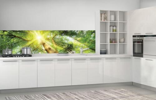 Herbes papier peint Papier peint pour la cuisine de forêt au soleil 310112 /_ vekmvt