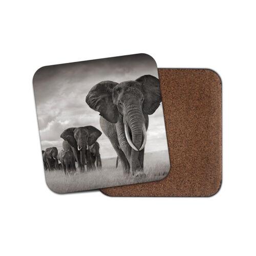 ELEPHANT troupeau boissons Coaster-Safari Afrique Zoo Animal Nature Fun Cadeau #8955