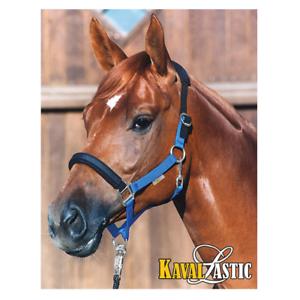 KavalLastik DAS Sicherheitshalfter von Kavalkade Pony 2,VB und WB
