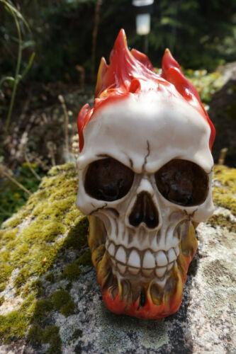 67072    FIGURINE CRANE TIRELIRE  TETE DE MORT GOTHIQUE SKULL FLAMME FEUX SKULL
