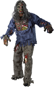 Complete Zombie Adult Costume