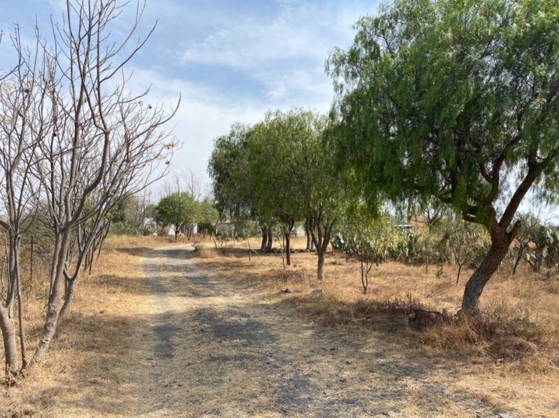 Los Ángeles, Corregidora terreno rural escriturado