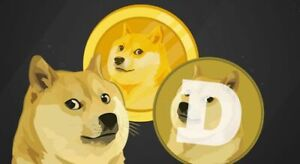 1000-DogeCoin-doge-CRYPTO-MINING-CONTRACT-Crypto-Currency