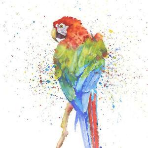 Details about  /Fine Art Print of PARROT original watercolour by HELEN APRIL ROSE   608