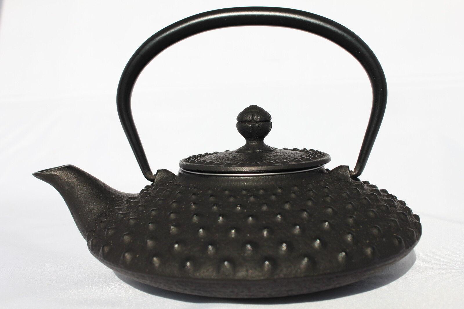 Iwachu Japanese Cast Iron Teapot Hira Arare (1.2 L)