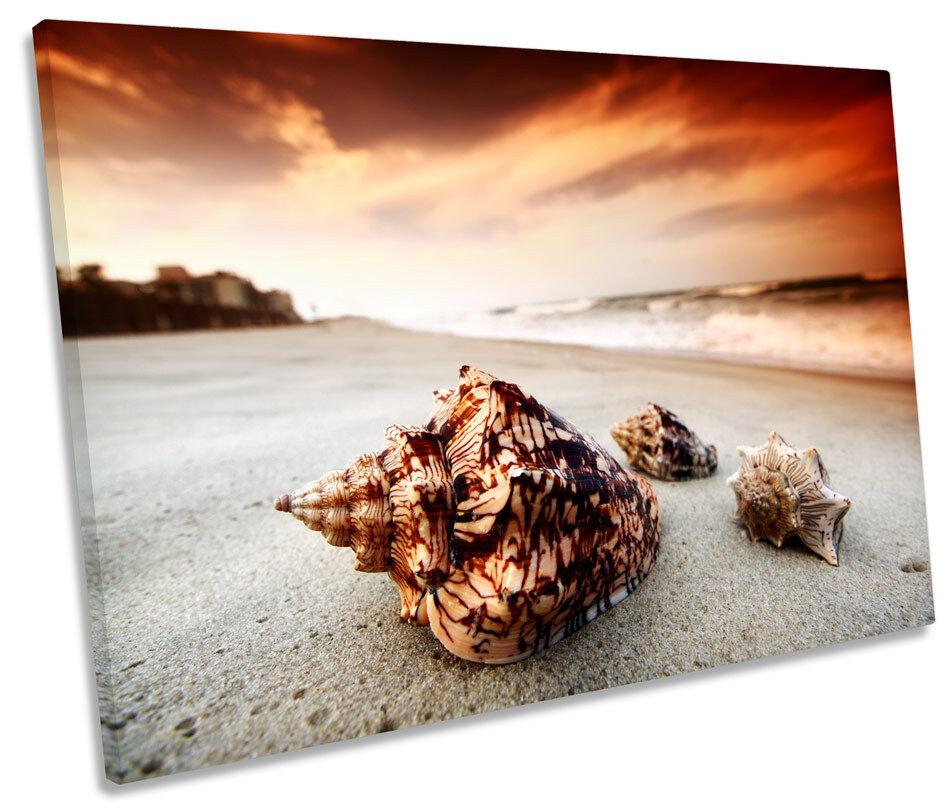 Sea Shell Sunset Beach SINGLE CANVAS Wand Kunst Box Framed