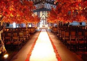 Image Is Loading 75 Ft Satin Aisle Runner Bridal Wedding 100
