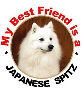 Auto combined postage 2 Japanese Spitz Car Stickers By Starprint