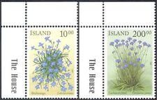 Islanda 2002 fiori estivi/Lobelia/Fiordaliso/Piante/NATURA SET 2v (s1975)