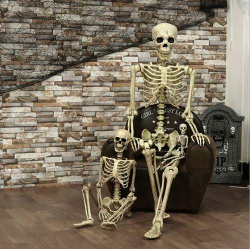 Halloween Human Skeleton Prop Full Skull Hand Life Body Anatomy Model Decor DIY