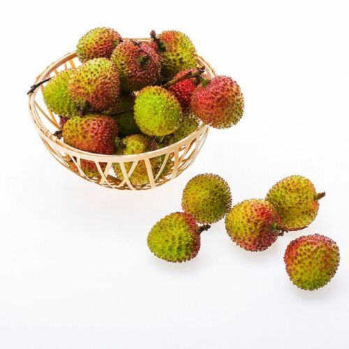 1 Pack 20 Lychee Litchi Fruit Seeds Delicious Sweet Perennials Bulk Seeds S086