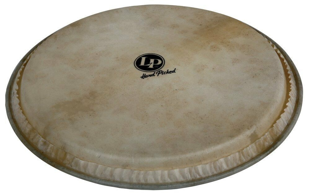 Latin Percussion Djembenfell Hand Picked 12,5  Ziegenfell Latin Percussion