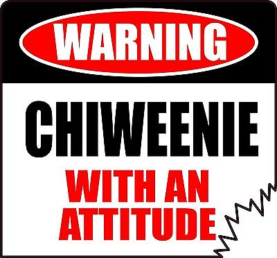"/""WARNING MALTESE WITH AN ATTITUDE/"" decal BUMPER STICKER breed dog puppy cute"