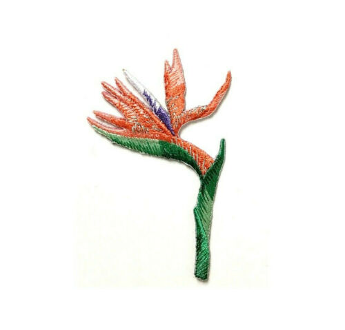 "Bird Of Paradise Cruise Flower Tropical 3/""H Embroidered Iron On Patch"