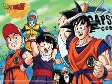 DRAGON BALL Z - GOKU & FRIENDS - ANIME POSTER - 24x36 MANGA 51942