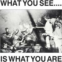 Alternative Tv / He - What You See Is What You Are [new Cd] on sale