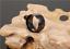 Anello-Fede-Fascia-Uomo-Donna-Unisex-Acciaio-Inox-Coppia-Nero-Black-Doppio-11-mm miniatura 6