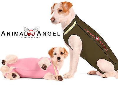 Animal Angel Op Body Hunde, Sterilisation, Verletzungen, KÄlte, Pulli, Mantel QualitäT Und QuantitäT Gesichert