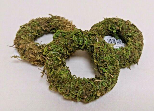 3x Moos Kranz Mini Deko Natur Tisch Schale Basteln 6 Cm Herbst Ring
