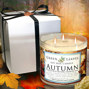 Fall-Candle-Handmade-Hand-Poured-All-Natural-Soy-Candle-in-17-5oz-3-Wick-Gift
