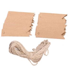100x-Kraftpapier-Geschenk-Anhaenger-Haengeetiketten-Hochzeit-Danke-Tags-Labels