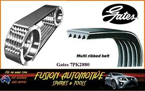 5PK1180 Gates Belt Fiat