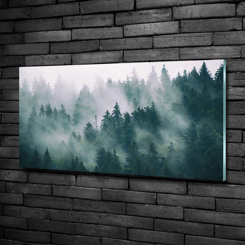 Vetro-Immagine Parete immagini Stampa su vetro 100x50 Decorazione paesaggi nebbia sopra la foresta