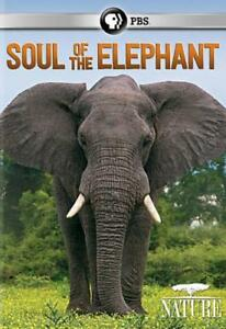 NATURE-SOUL-OF-THE-ELEPHANT-NEW-DVD