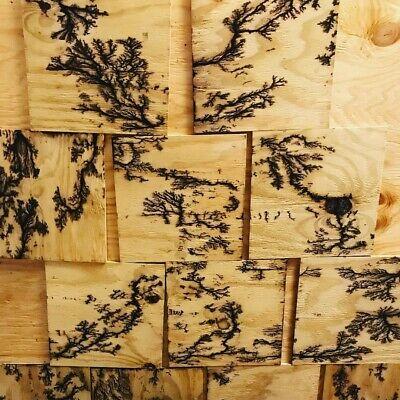 Lichtenberg Figure Wood With Shellac Finish 12 X12 Fractal Wood Burning Ebay
