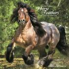2017 Horse Feathers Wall Calendar by Willow Creek Press