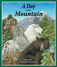 A Day on the Mountain by Kevin Kurtz (Hardback, 2010)
