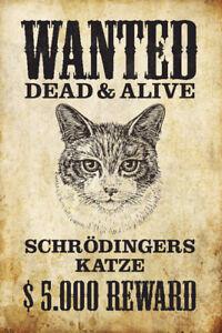 Wanted-Schrodingers-Chat-Pancarte-en-Tole-Signe-Metal-Voute-Etain-20-X-30-CM