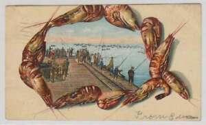C1356 : 1910 San Diego, Ca Déguisement Jetée Carte Postale