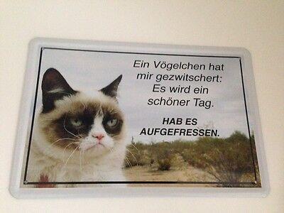 Ein VÖgelchen - Katzen Funschild - Blechschild 20x30 Cm Türschild Deko 33